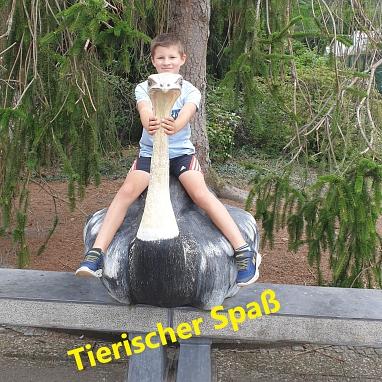 nElias Zoo 2.jpg©Gretel-Bergmann-Grundschule Eystrup